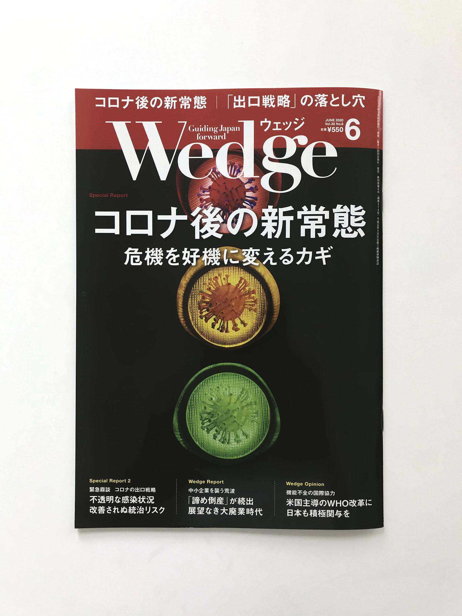 wedge6c